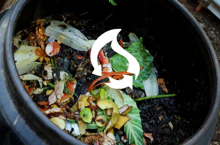 Crean Energ 237 A A Partir De Frutas Y Verduras Proyecto Fse