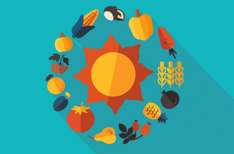 La Energ 237 A Solar En La Industria De Alimentos