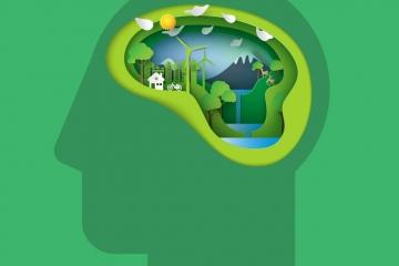 profesionales en Sustentabilidad Energética